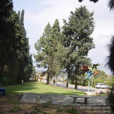 """גן """"שדרות ראובן"""" בכניסה לצופית בשנת 2011"""