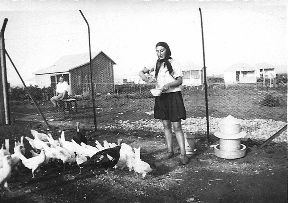 דבורה דניאלי מאכילה תרנגולות