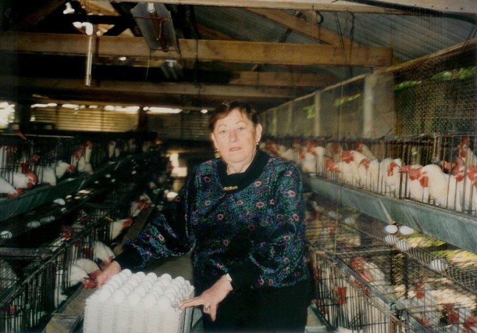 רחל הפלינג אוספת ביצים, צילום: יעל ברק