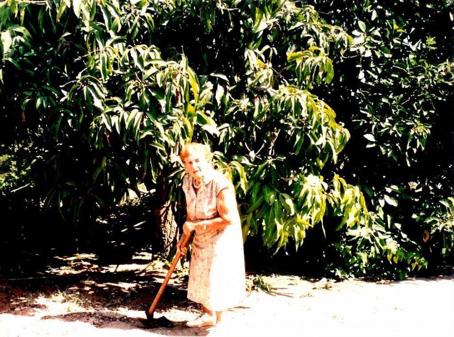 עדינה רצ´קו בחצר ביתה. צילום: יעל ברק