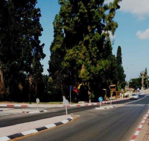 רחוב מעלה גן - איפה החץ לפניה שמאלה?