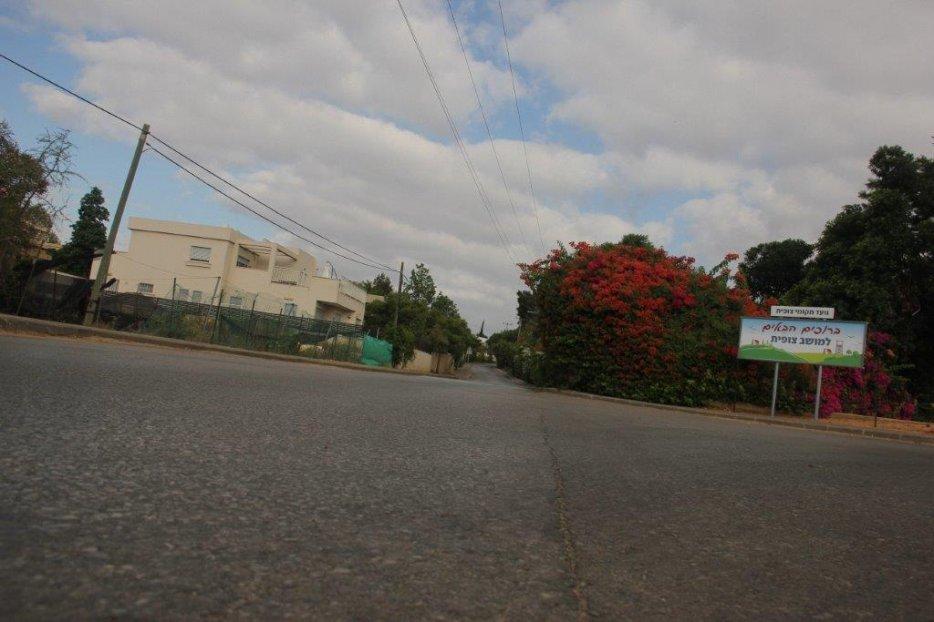 הצטלבות הרחובות במזרח: השדרה ואילנות
