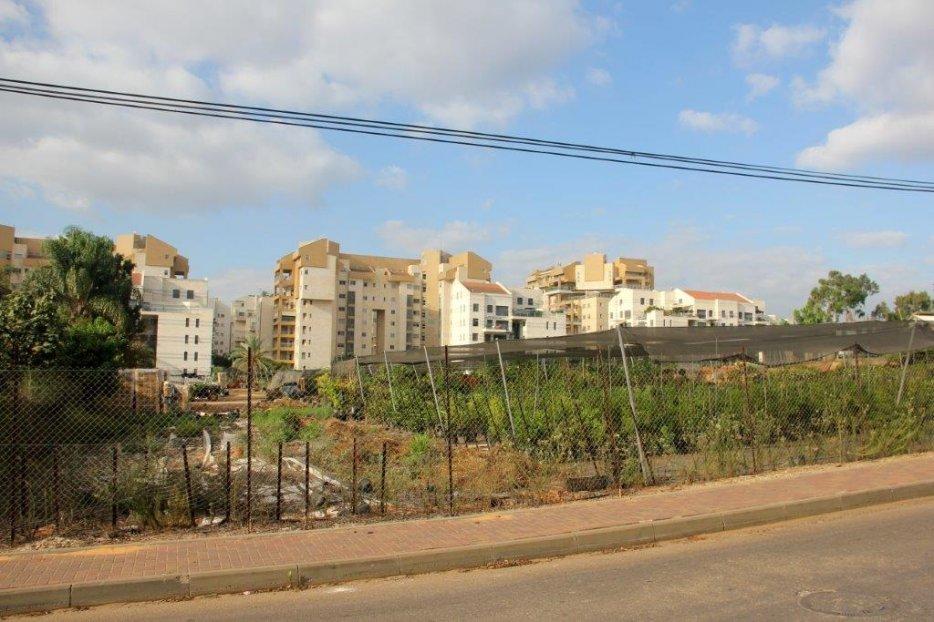 """משתלת בן עזר מול """"מפלצות הבטון"""" בכפר סבא"""