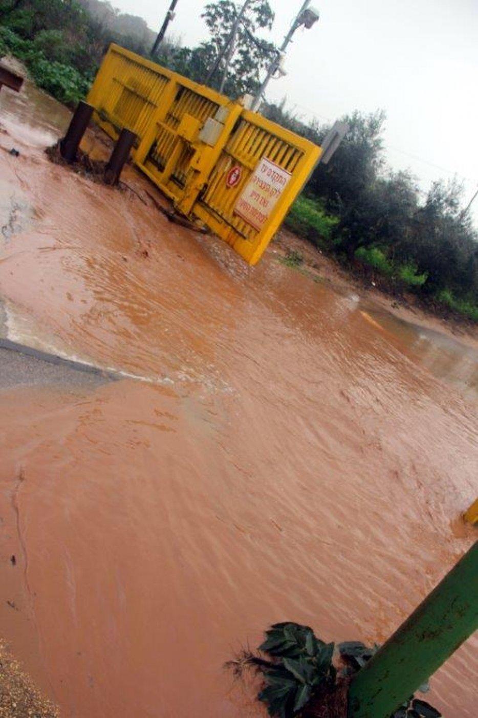 המים שזרמו בתעלה מגיעים בשצף קצף לשער המזרחי שהפ לבריכת ניקוז. צילום: יגאל שרגיאן