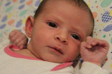 גפן מרגלית בת לאמא גל ואבא לירון נולדה ביום 23-28-2017