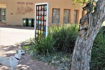 רגע של מתח בין החתול שעל העץ והכלב הממתין